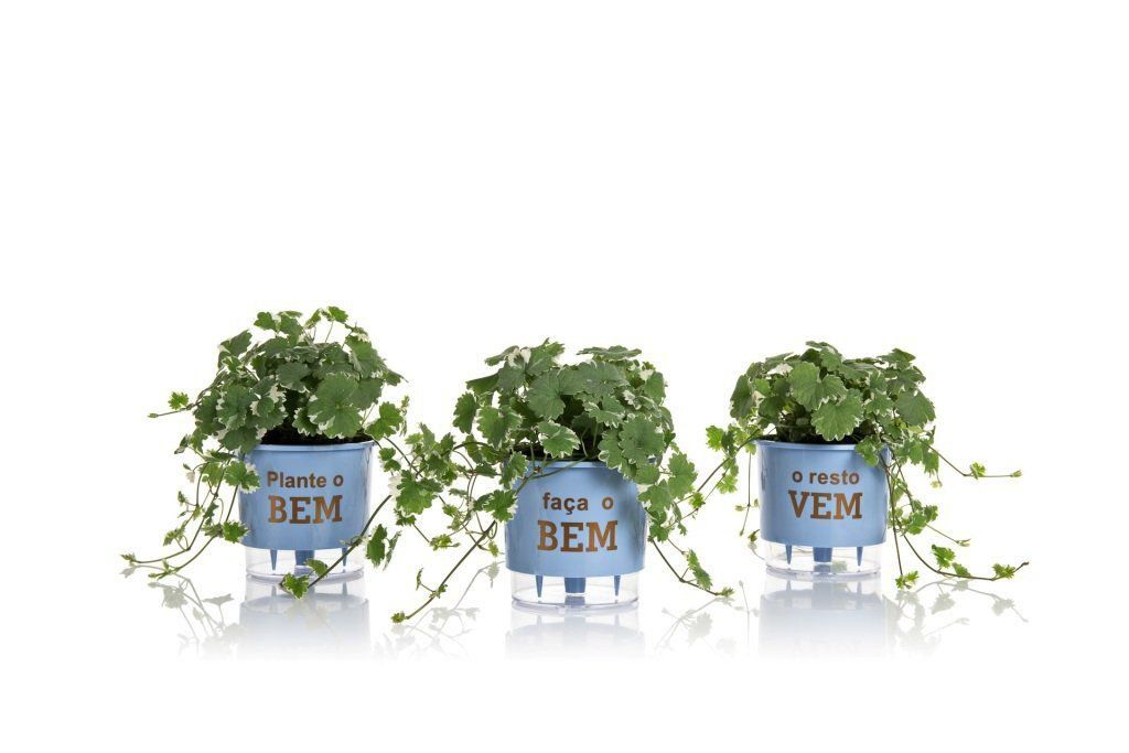 Kit 3 Vasos Autoirrigáveis Médios 16cm x 14cm Plante o Bem Azul Serenity