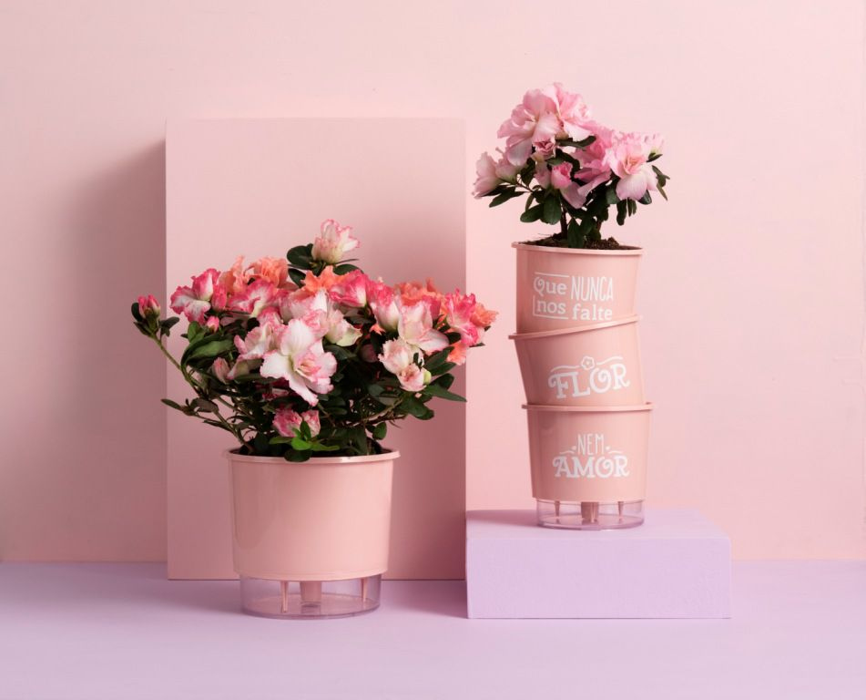 Kit 3 Vasos Autoirrigáveis Pequenos 12cm x 11cm Flor e Amor Rosa Quartz