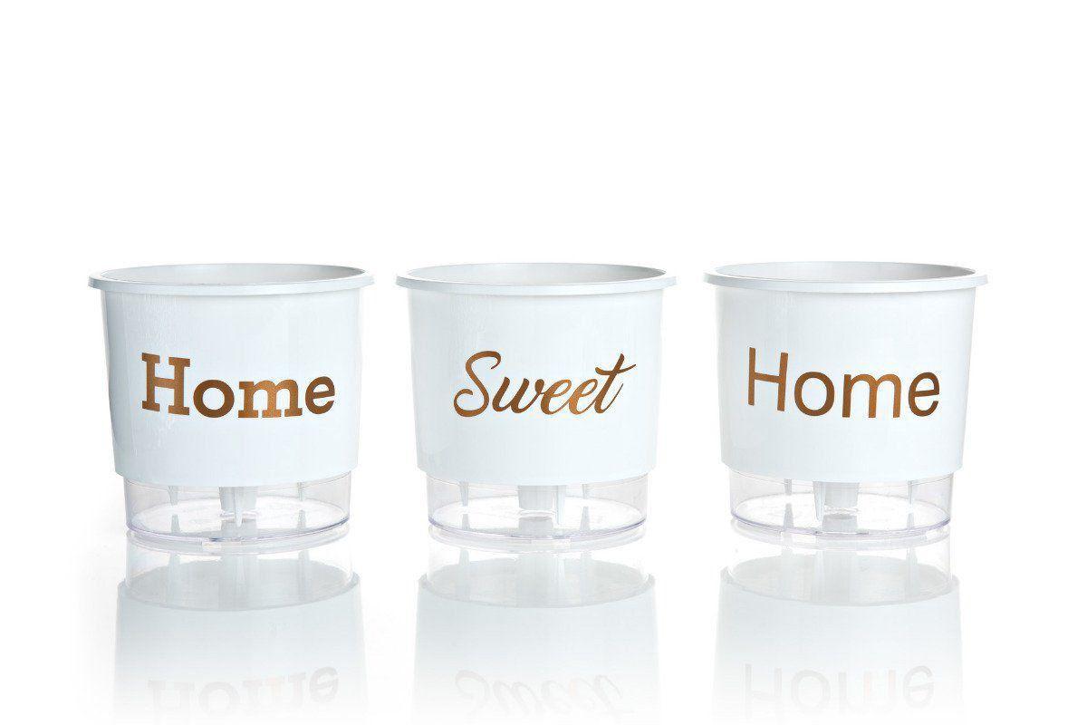 Kit 3 Vasos Autoirrigáveis Pequenos 12cm x 11cm Home Sweet Home Branco
