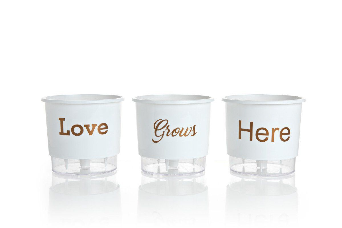 Kit 3 Vasos Autoirrigáveis Pequenos 12cm x 11cm Love Grows Here Branco