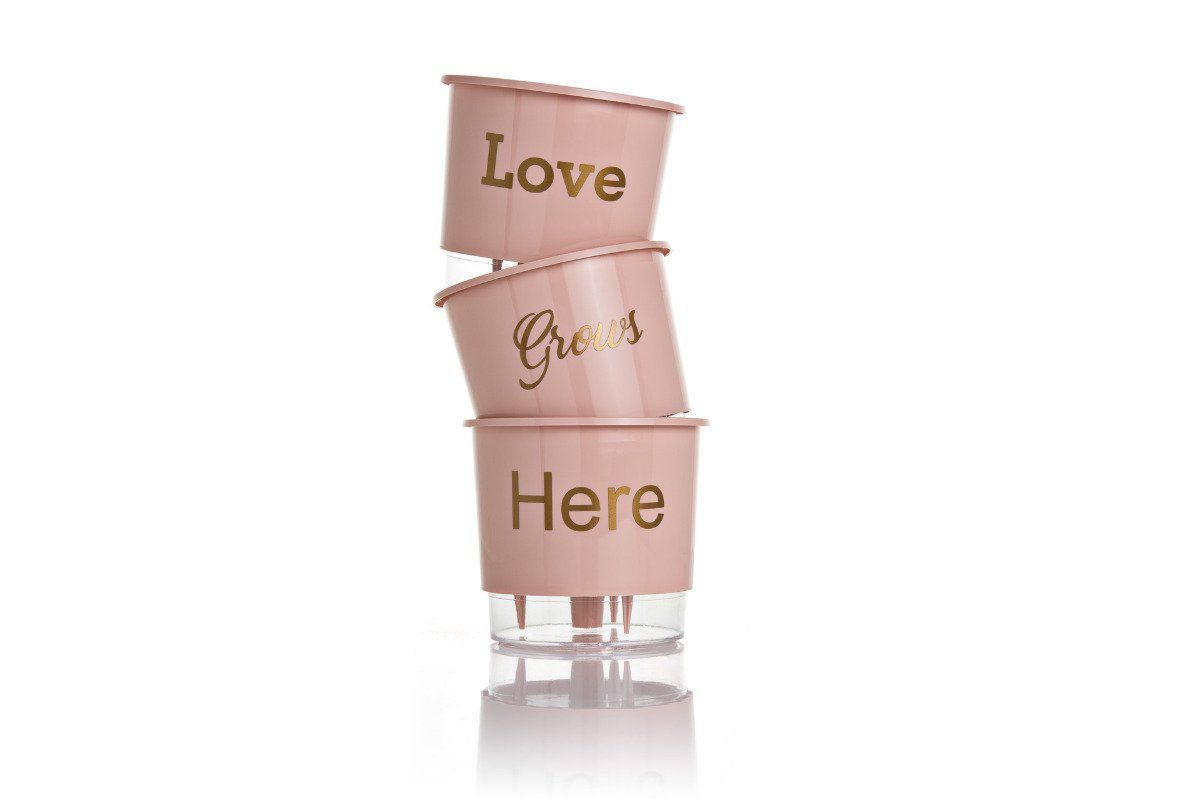 Kit 3 Vasos Autoirrigáveis Pequenos 12cm x 11cm Love Grows Here Rosa Quartz