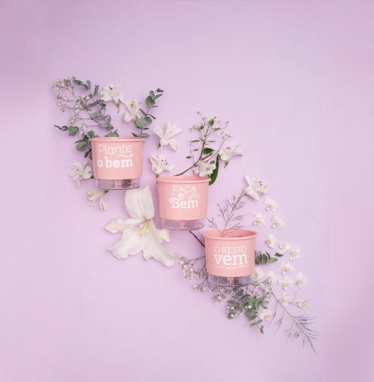 Conjunto 3 Vasos Autoirrigáveis Pequenos 12cm x 11cm Plante o Bem Rosa Quartz  - Loja Raiz