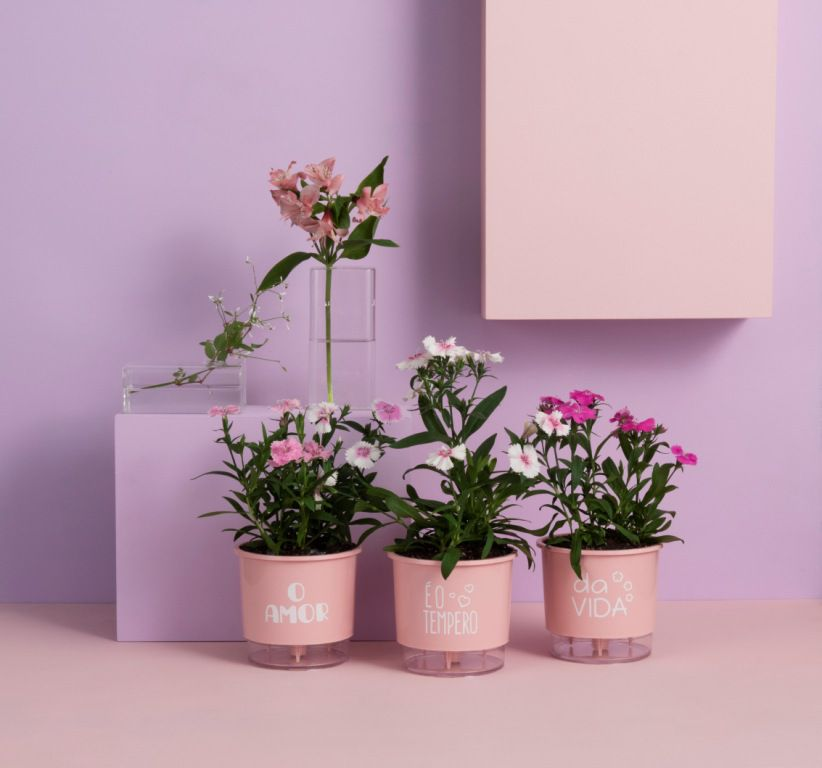 Conjunto 3 Vasos Autoirrigáveis Pequenos 12cm x 11cm O Amor é o Tempero da Vida Rosa Quartz  - Vasos Raiz Loja Oficial