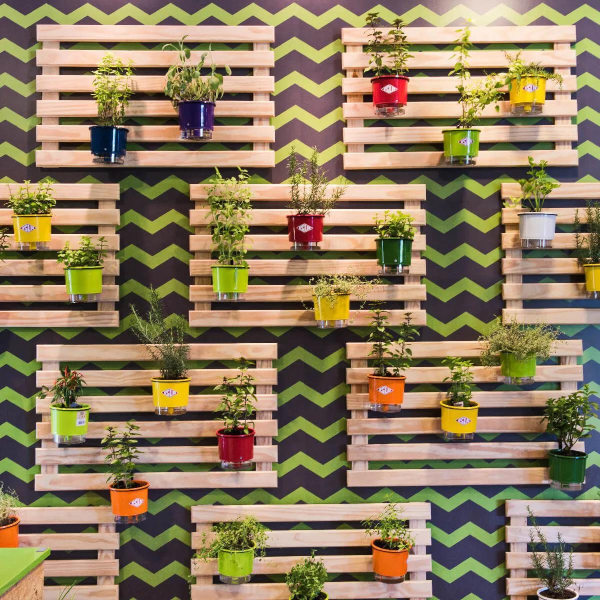 Kit 7 Vasos Raiz Coloridos Rainbow tamanho pequeno N02 12cm x 11cm  - Vasos Raiz Loja Oficial