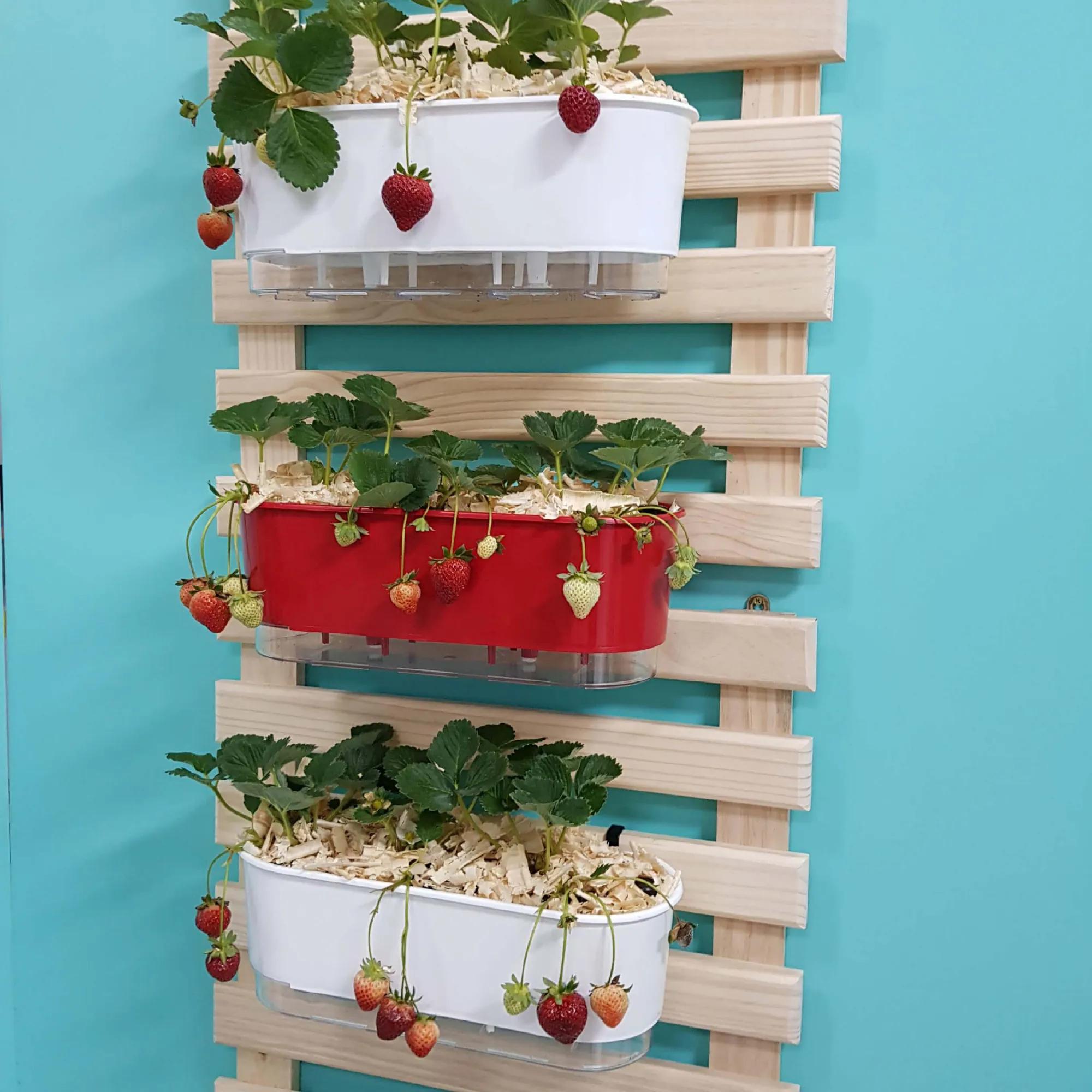 Kit Horta de Morangos 60cm x 100cm com 3 Jardineiras  - Vasos Raiz Loja Oficial