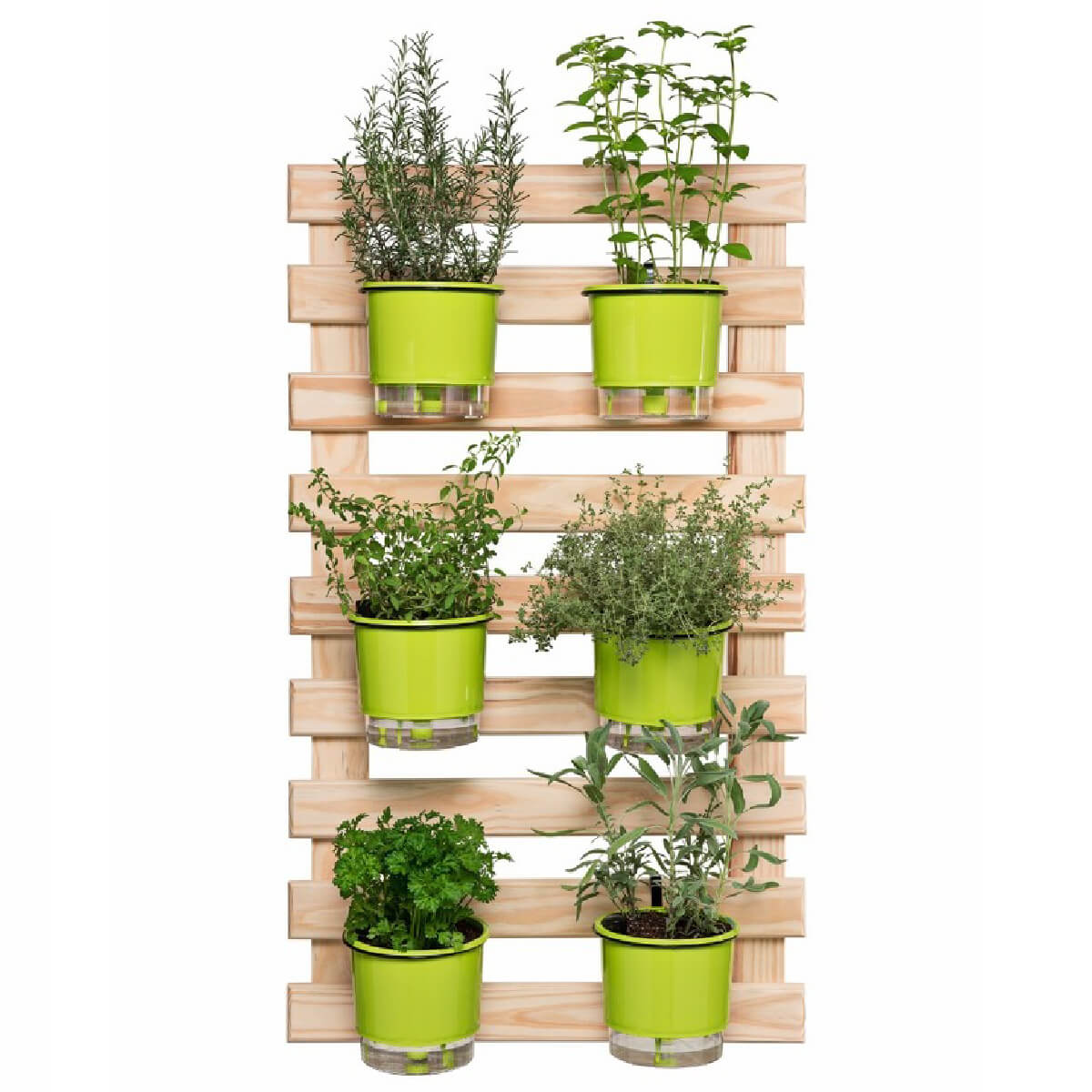 Kit Horta Vertical 60cm x 100cm com 6 Vasos Verdes  - Loja Raiz