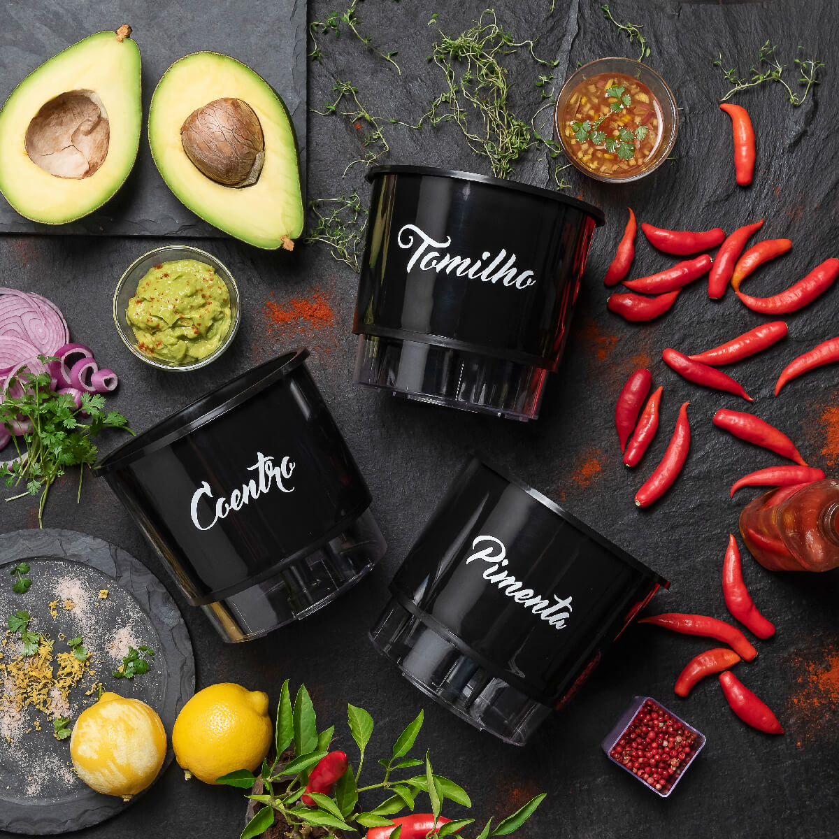 Kit Plantio Completo Gourmet México  - Loja Raiz