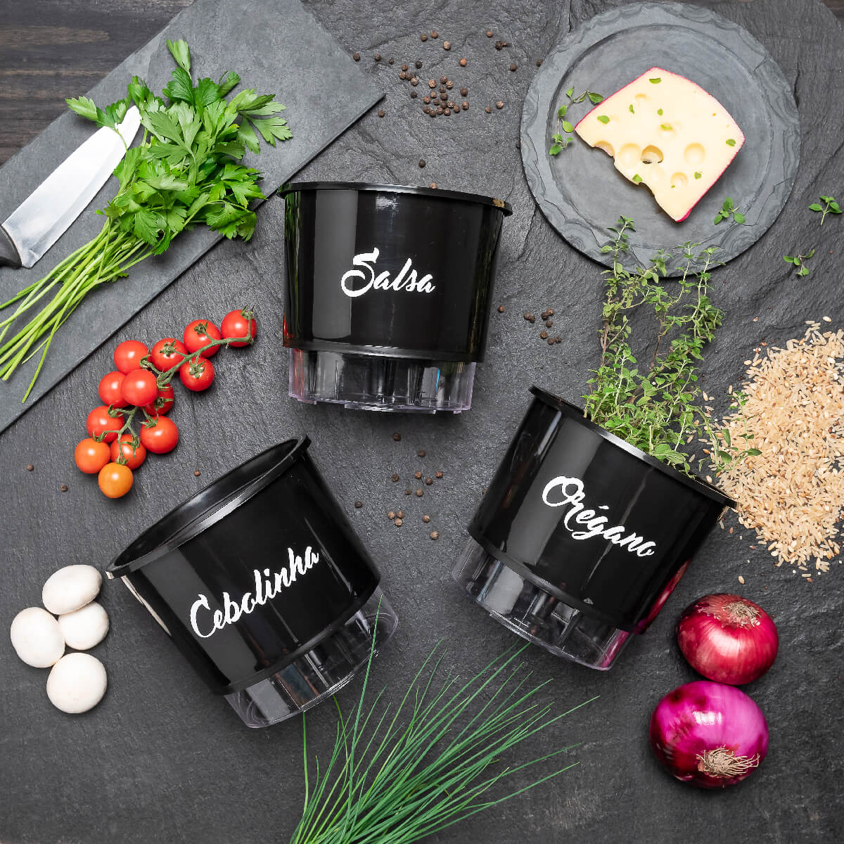 Kit Plantio Completo Gourmet Risoto  - Loja Raiz