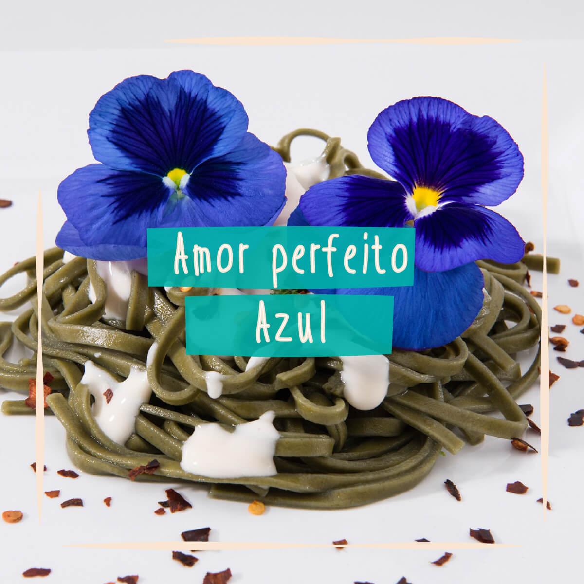 Sementes para plantar Amor Perfeito Azul Gigante Comestível  - Vasos Raiz Loja Oficial
