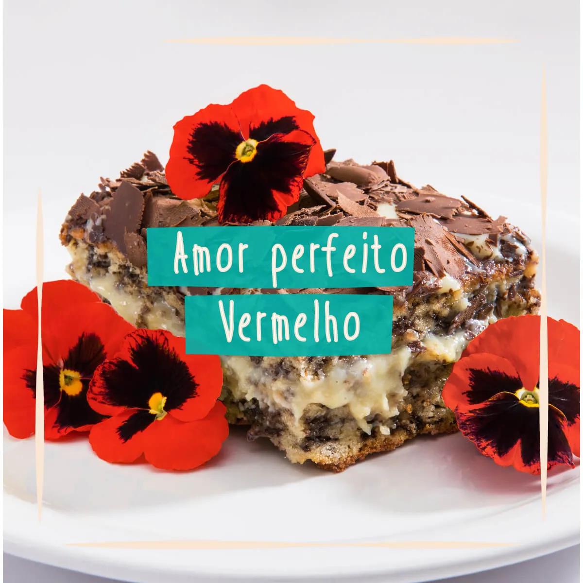 Sementes para plantar Amor Perfeito Vermelho Comestível  - Vasos Raiz Loja Oficial