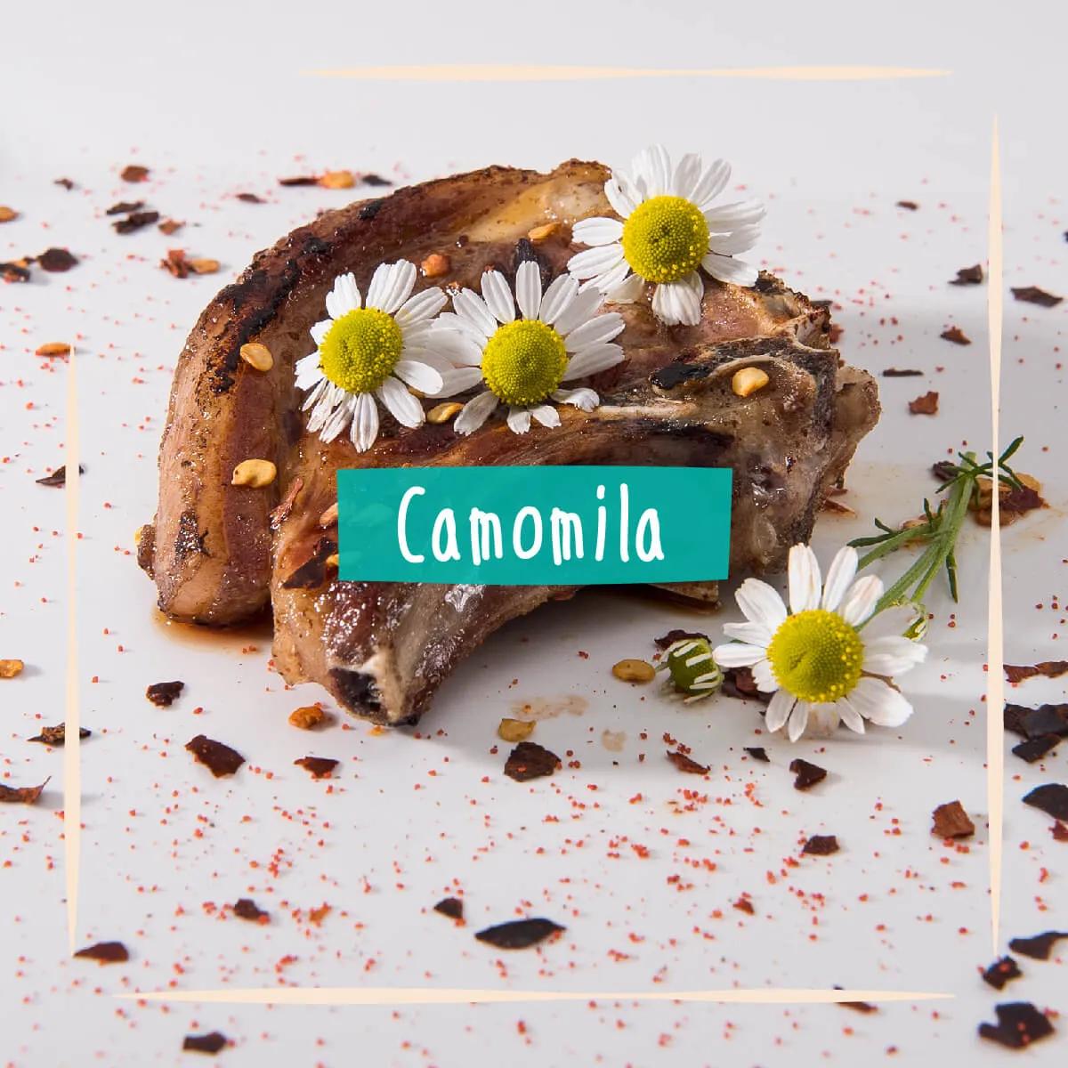 Sementes para plantar Camomila Comestível  - Vasos Raiz Loja Oficial