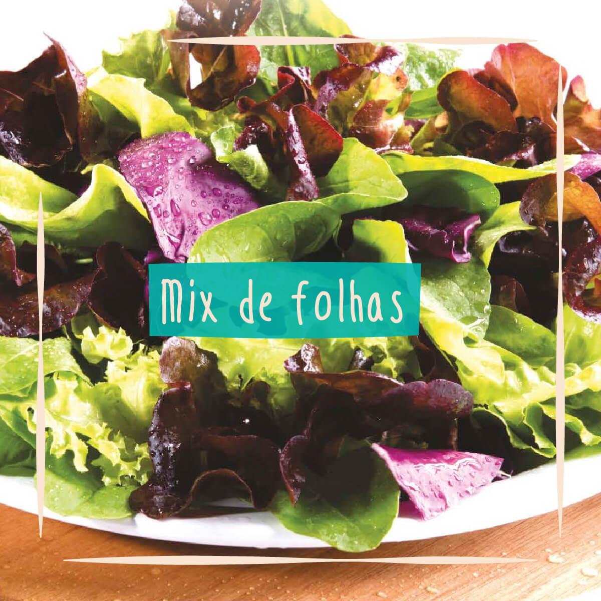 Sementes para plantar mix de folhas Baby Leaf em vasos autoirrigáveis RAIZ  - Vasos Raiz Loja Oficial