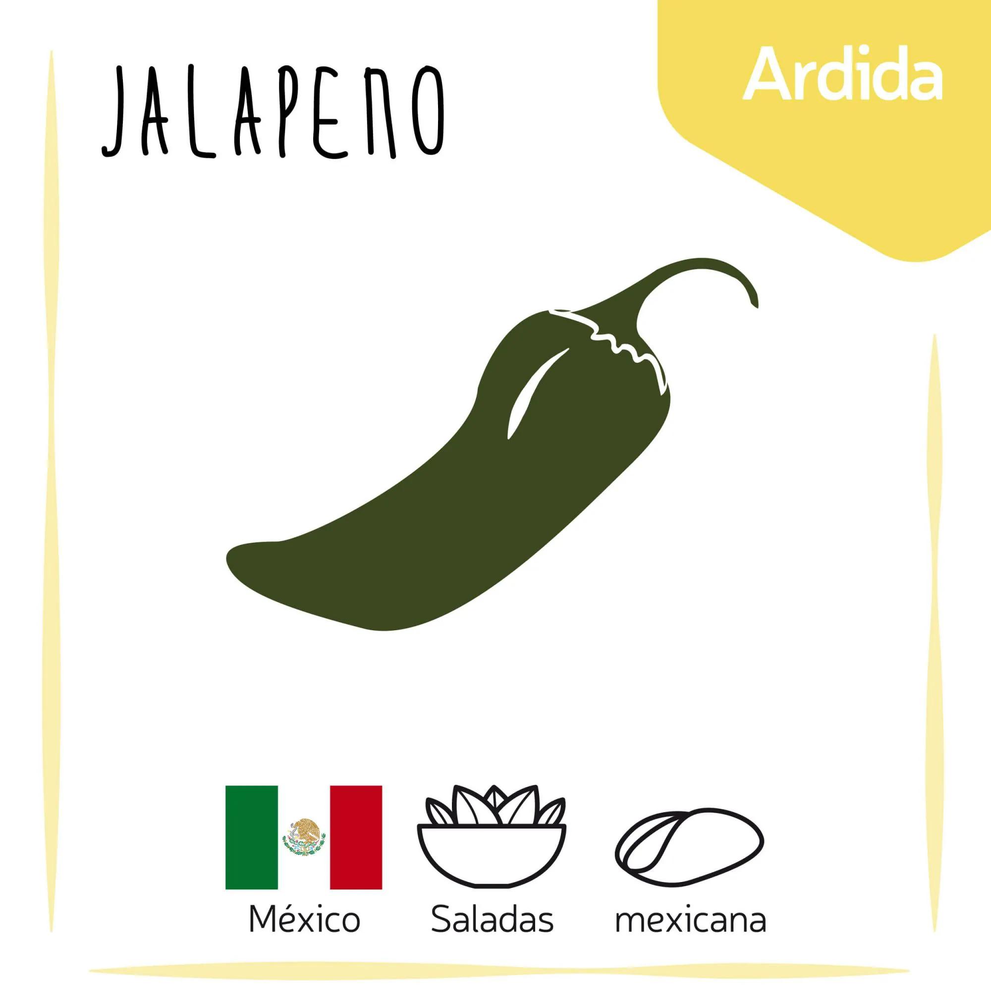 Sementes para plantar Pimenta Jalapeno em vasos autoirrigáveis RAIZ  - Vasos Raiz Loja Oficial