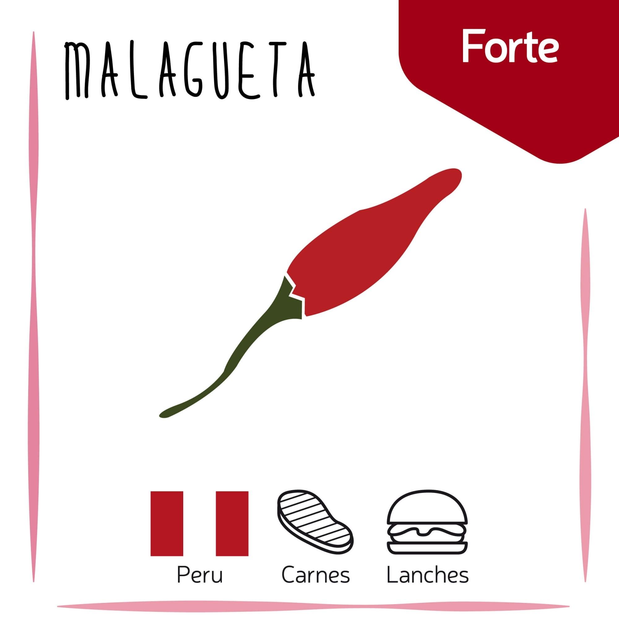 Sementes para plantar Pimenta Malagueta em vasos autoirrigáveis RAIZ  - Vasos Raiz Loja Oficial