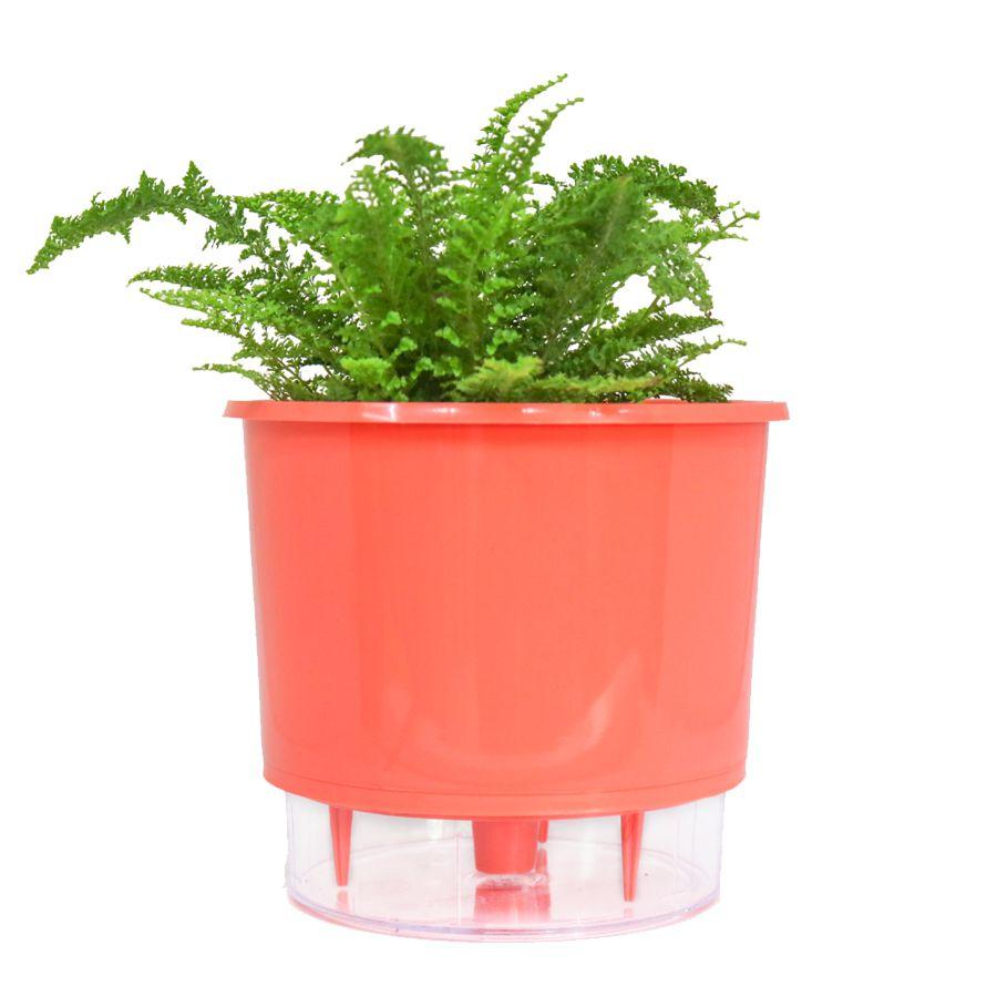 Vaso Autoirrigável Médio 16cm x 14cm Coral Wishes N03  - Vasos Raiz Loja Oficial