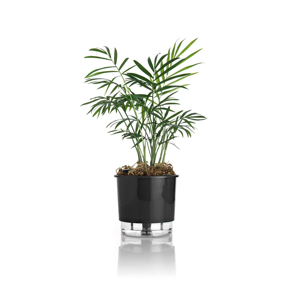 Vaso Autoirrigável Médio 16cm x 14cm Preto N03  - Vasos Raiz Loja Oficial