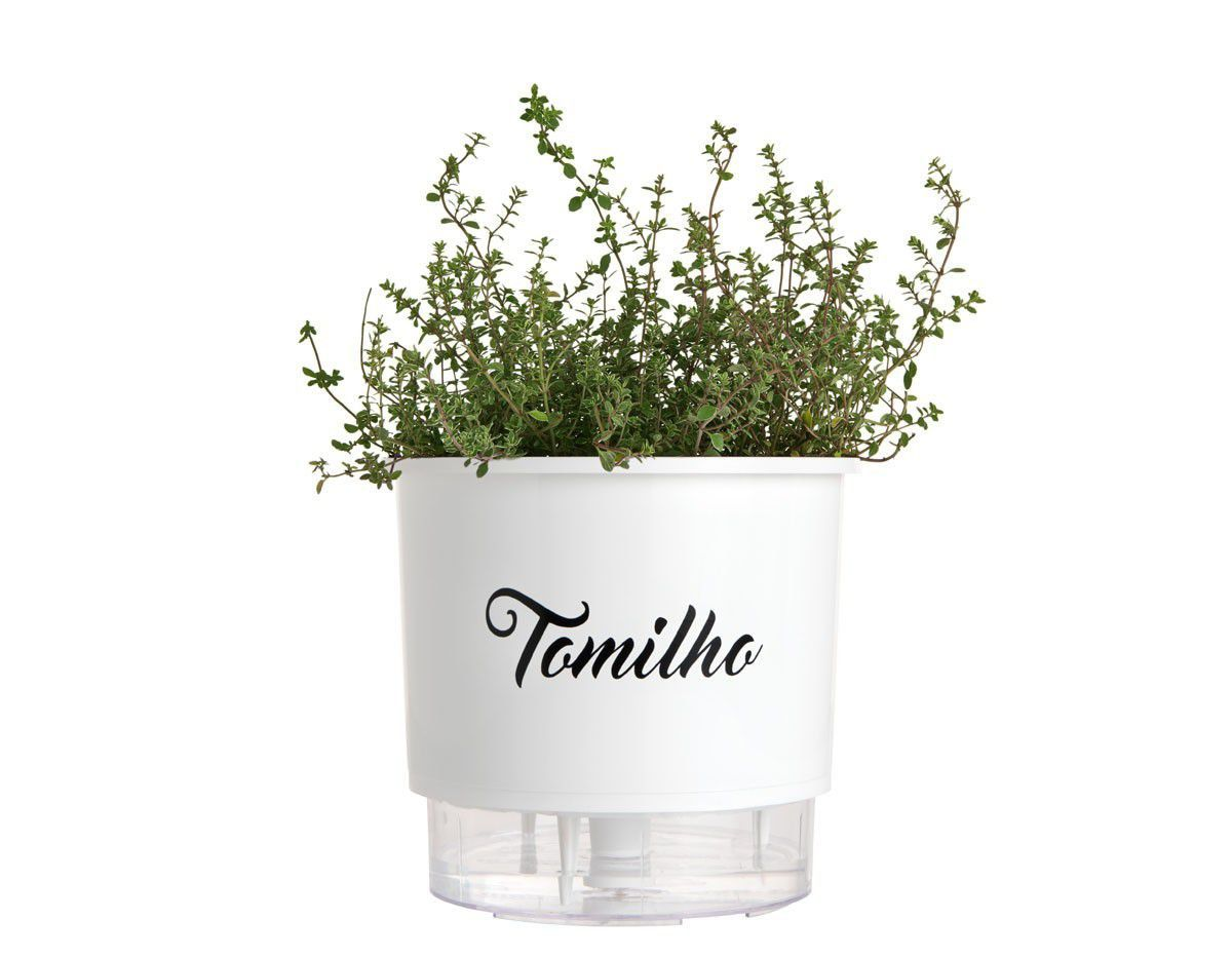 Vaso Autoirrigável Médio Branco Linha Gourmet 16cm x 14cm Tomilho