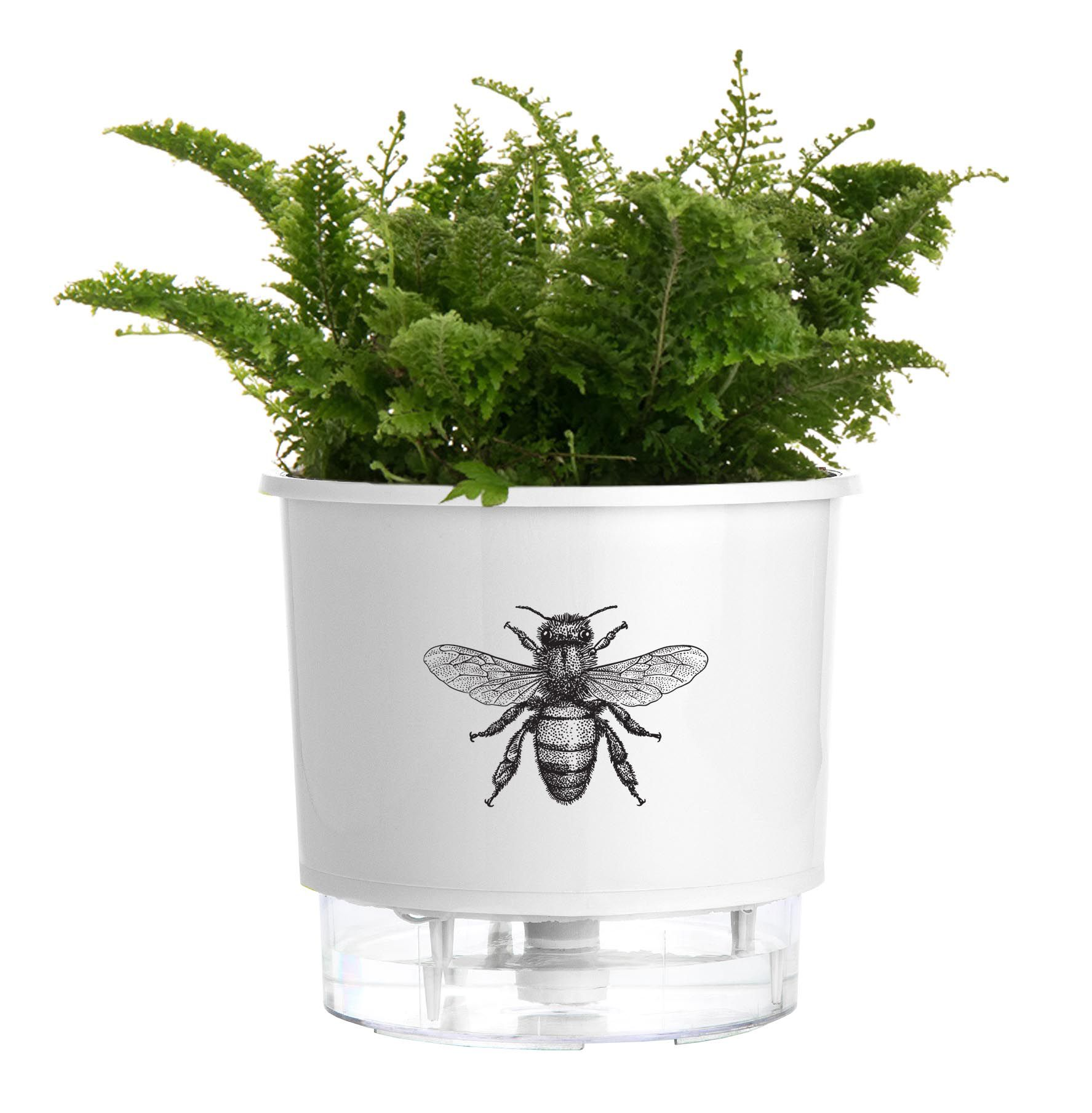 Vaso Autoirrigável Pequeno N02 12cm x 11cm Branco Abelha  - Vasos Raiz Loja Oficial