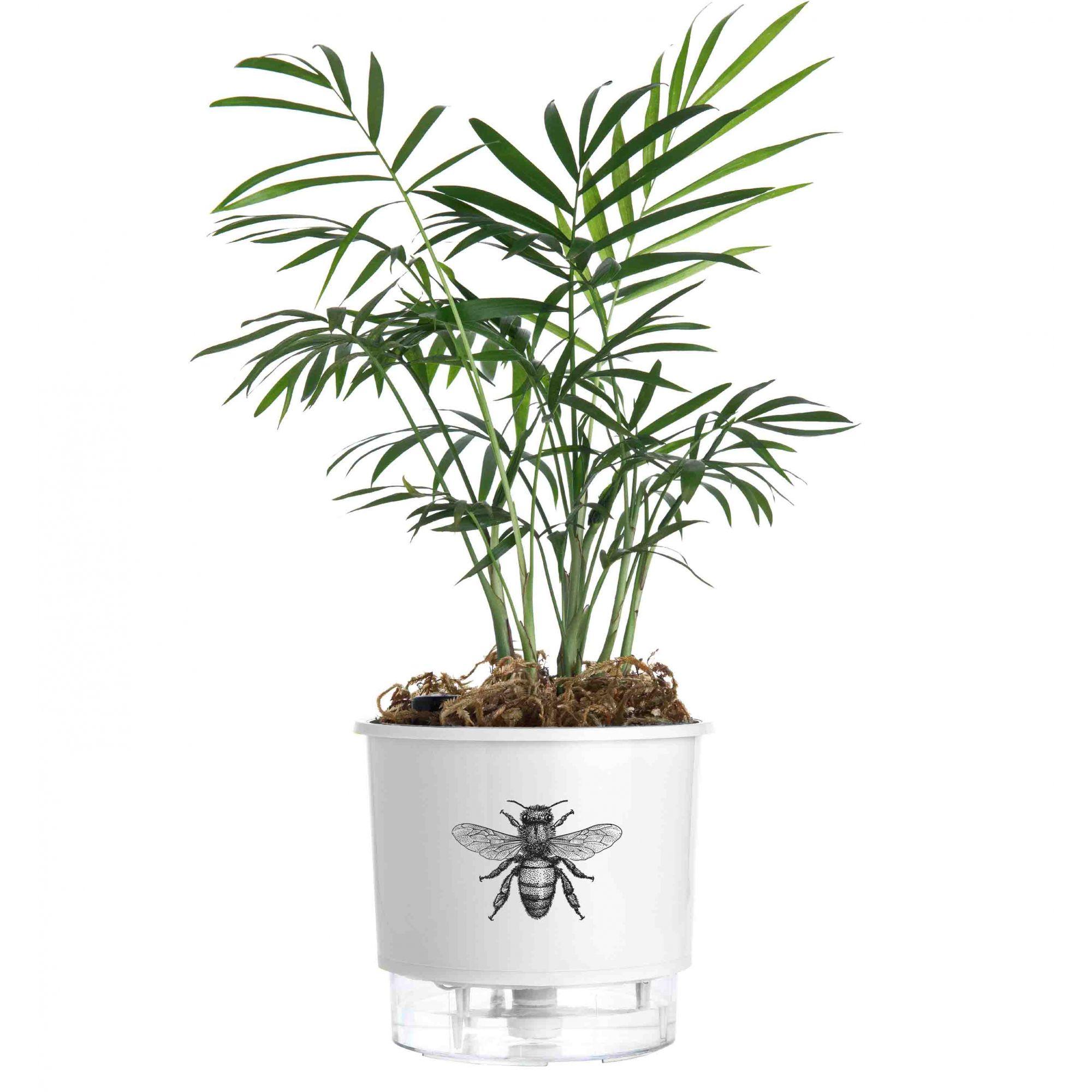 Vaso Autoirrigável Pequeno N02 12cm x 11cm Branco Abelha Linha Jardim de Insetos
