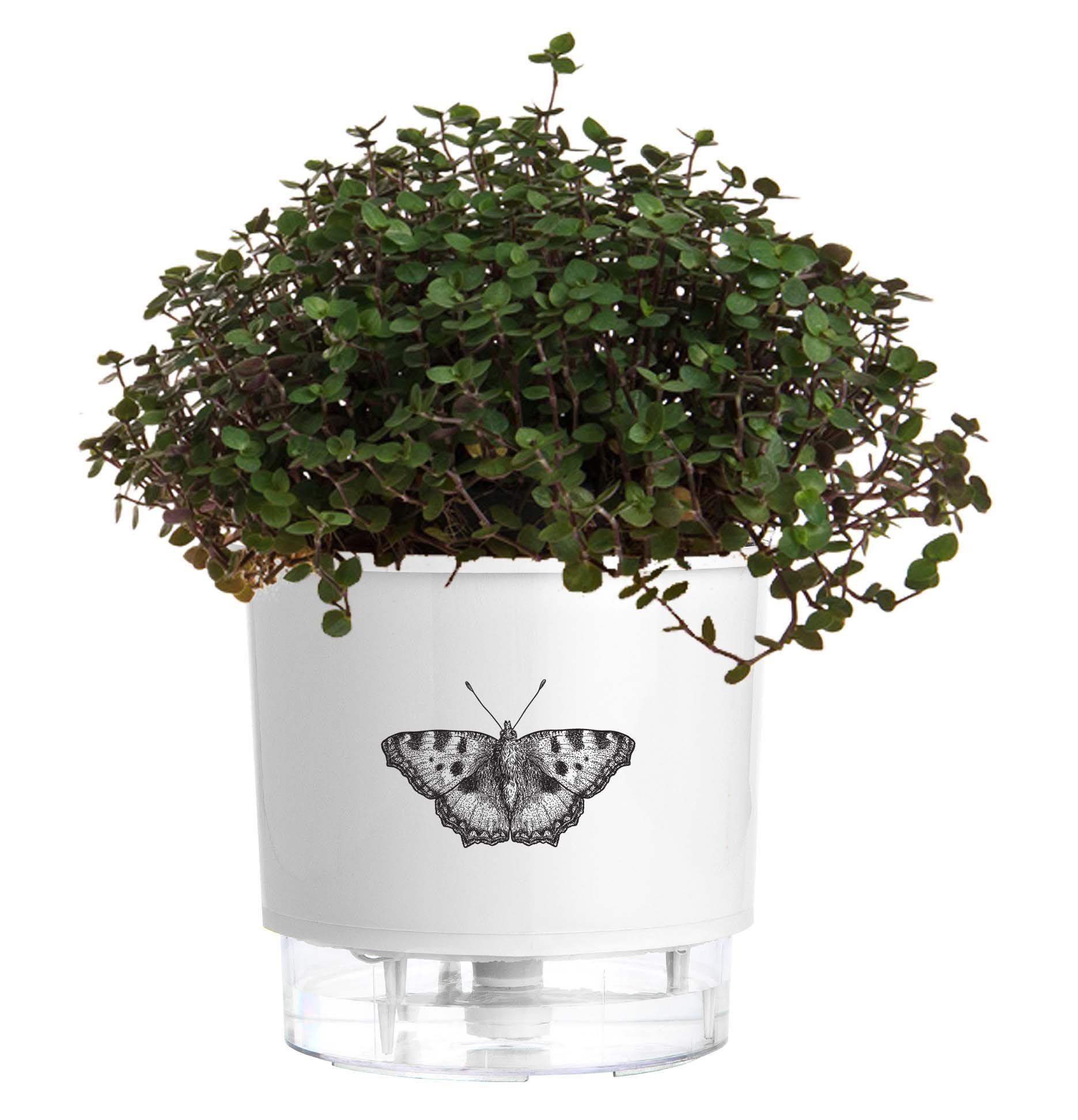 Vaso Autoirrigável Pequeno N02 12cm x 11cm Branco Borboleta  - Vasos Raiz Loja Oficial
