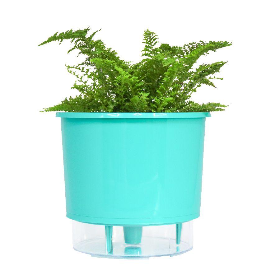 Vaso Autoirrigável Pequeno 12cm x 11cm Verde Raiz Wishes N02  - Vasos Raiz Loja Oficial