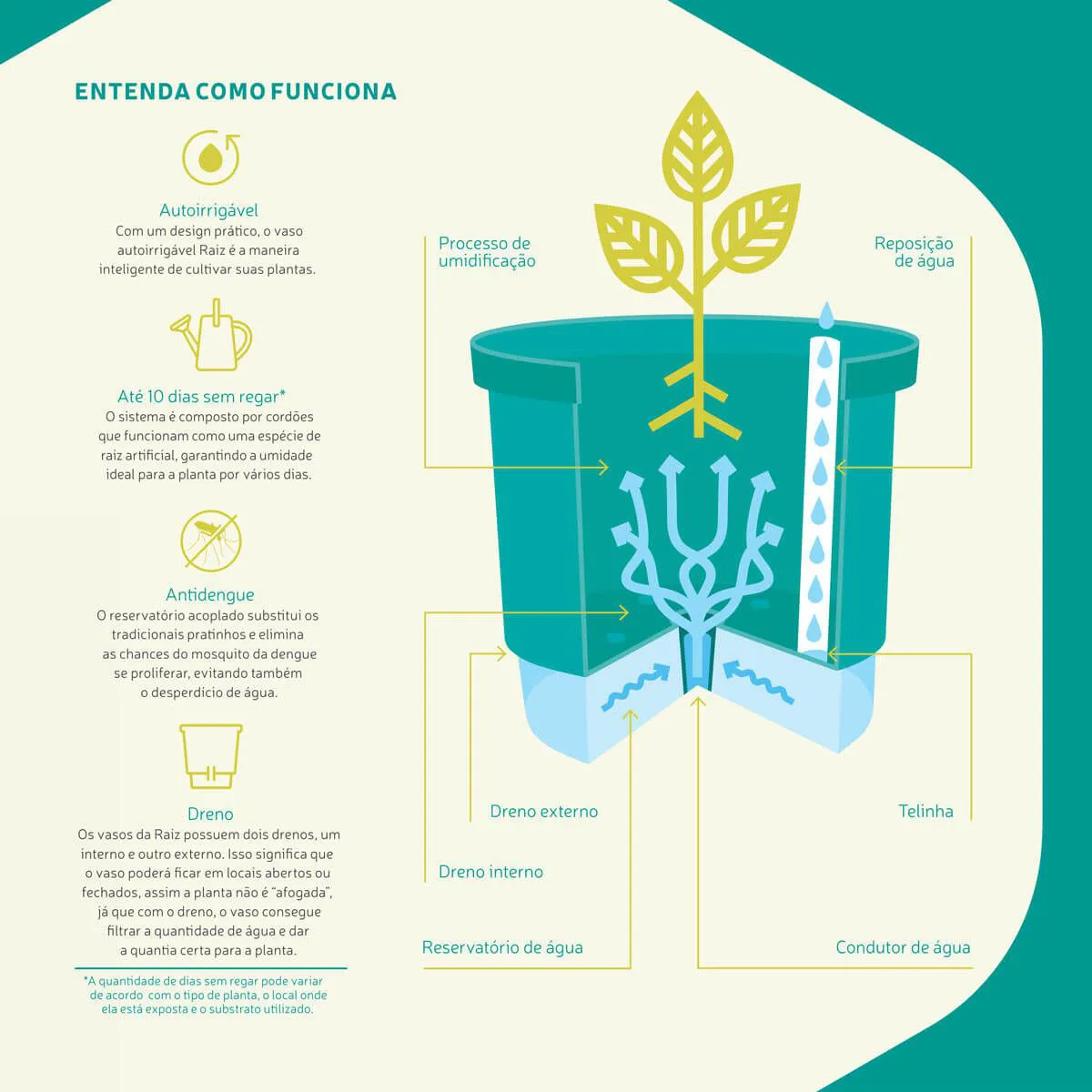 Vaso Autoirrigável Verde Claro Grande - N04  - Vasos Raiz Loja Oficial