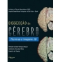 Dissecção Do Cérebro Técnicas E Imagens 3d