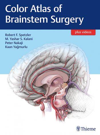 Livro Color Atlas of Brainstem Surgery