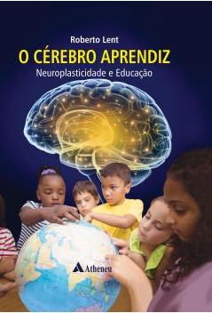 O Cérebro Aprendiz Neuroplasticidade E Educação