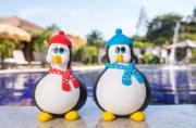 Casal de Pinguins com Toca e Cachecol em Biscuit