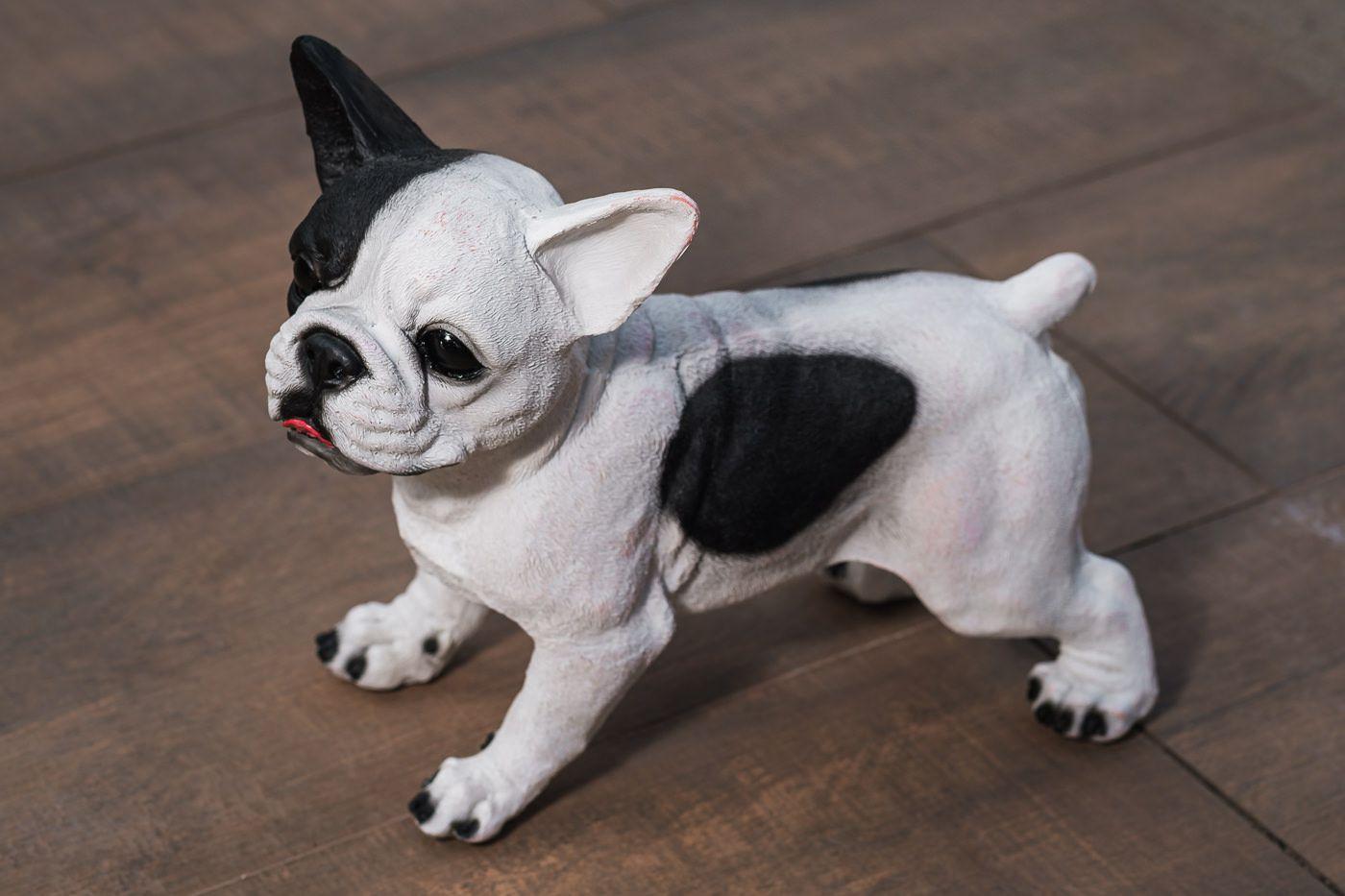 Bulldog frances cachorro em resina para jardim