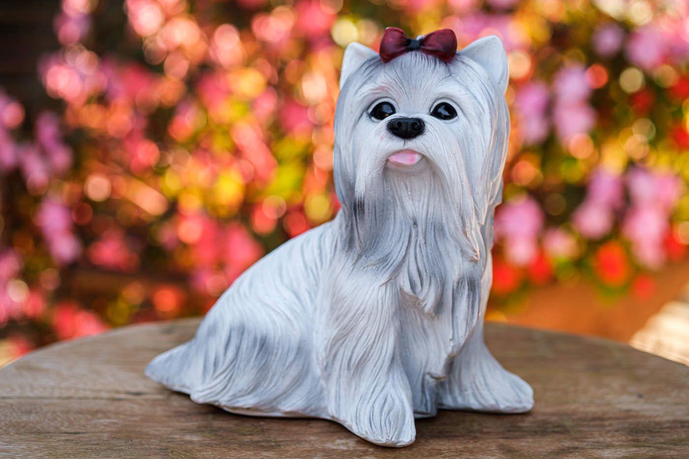 Cachorro Yorkshire Branco em Resina Decorativo