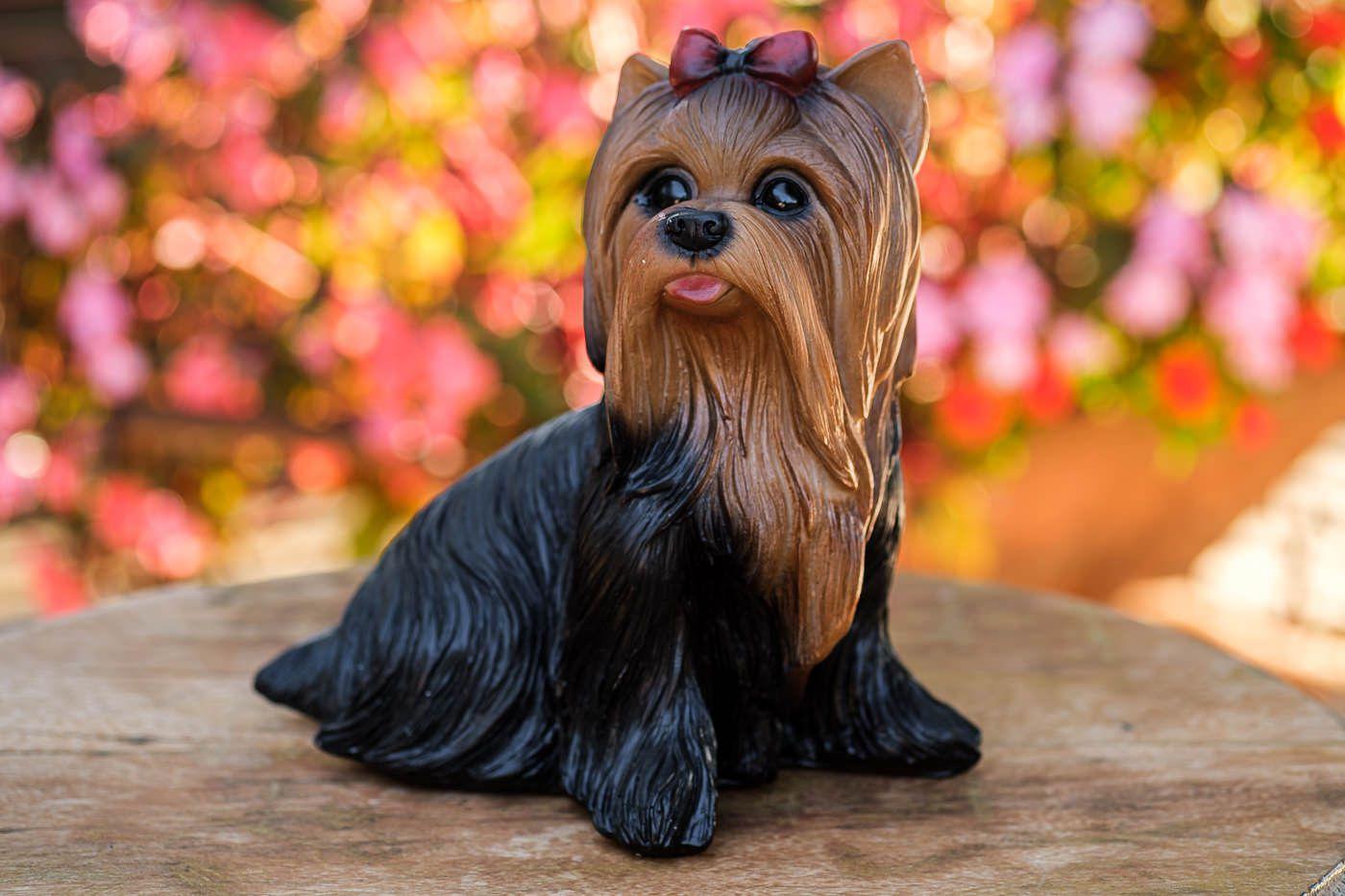 Cachorro Yorkshire em resina