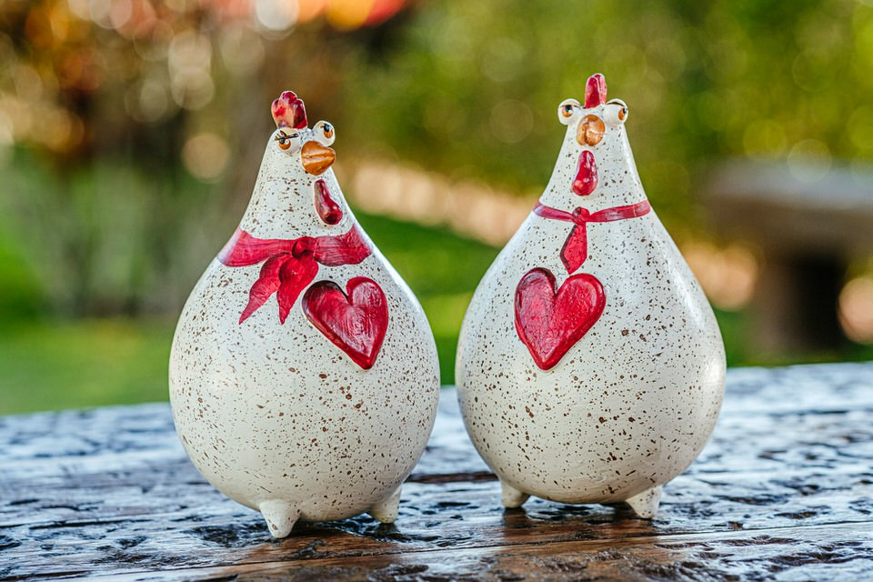 Casal Apaixonado de Galo e Galinha em Cabaça