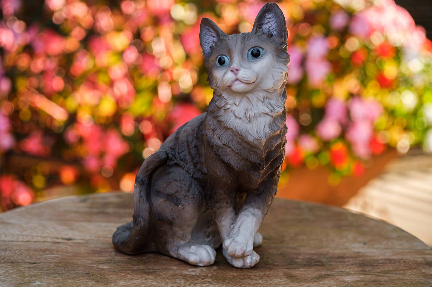 Gato em resina sentado