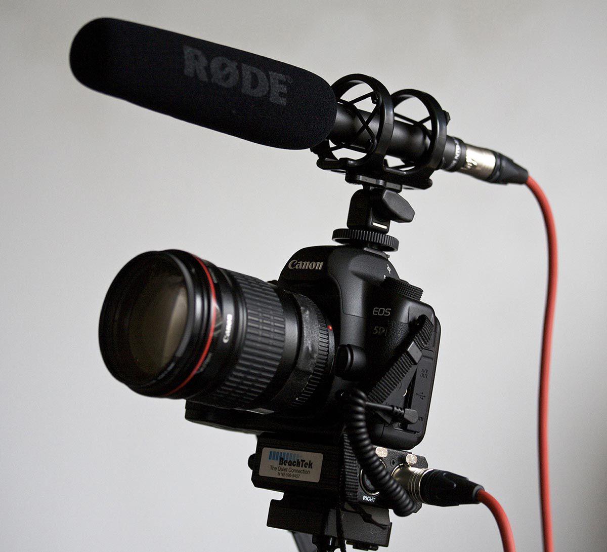 Microfone direcional Condensador Supercardioide | pilha AA (1.5V) ou Phantom P48 | RODE | NTG2