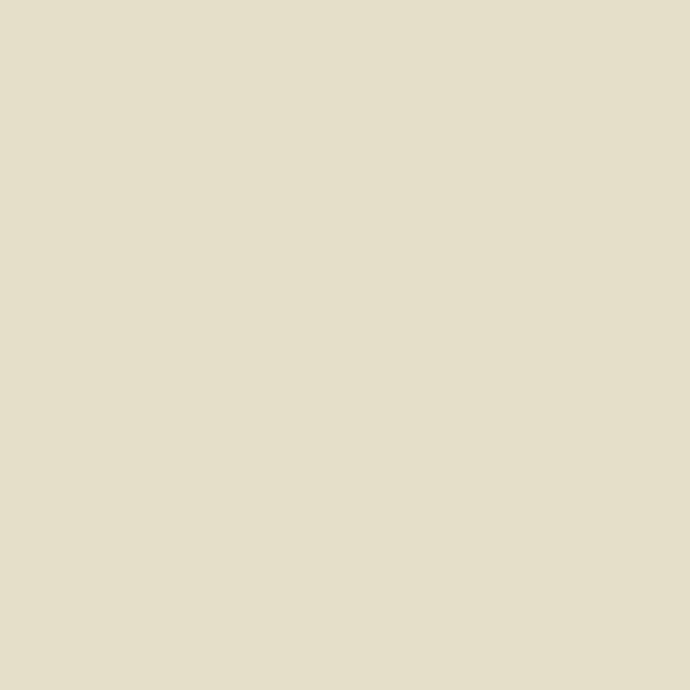Fabricart Coleção Basics & Colors - Liso Creme TT - 50cm X150cm