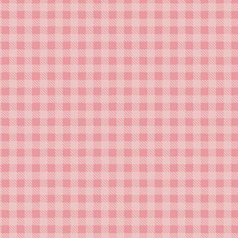 Fabricart Coleção Basics & Colors - Xadrez Rosa Bebê - 50cm X150cm