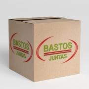Kit Retifica Cabecote Aco Inox - Corona 2.0 16V 96 / ... - 151215480 - Juntas Bastos