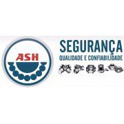 Rolamento Roda Dian/Tras - Eurovan / Caravelle - Ash4580 - Ash