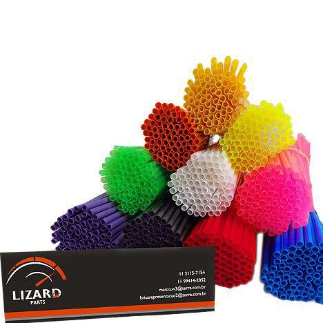 Capa de Raio Lizard