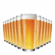 Jogo Copos Cerveja Willy P Vidro 310ml 12 Pcs