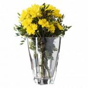 Vasos para Plantas Recipiente Gabriela Vidro 1600ml Ruvolo