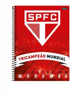 Caderno C/D 10 Materias Sao Paulo Foroni