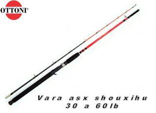 Vara De Pesca Carretilha Shouxihu 12210-2 2,10m 30-60lb 2p Ottoni