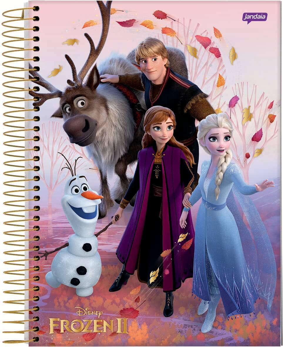 Caderno C/D 01 Materia Frozen Jandaia