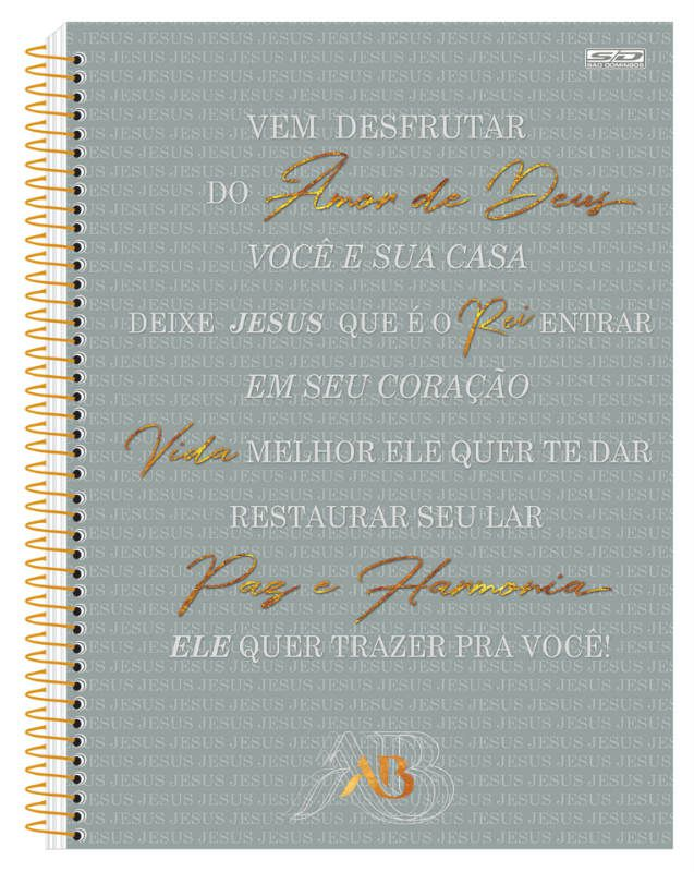Caderno C/D 10 Materias Aline Barros Sao Domingos