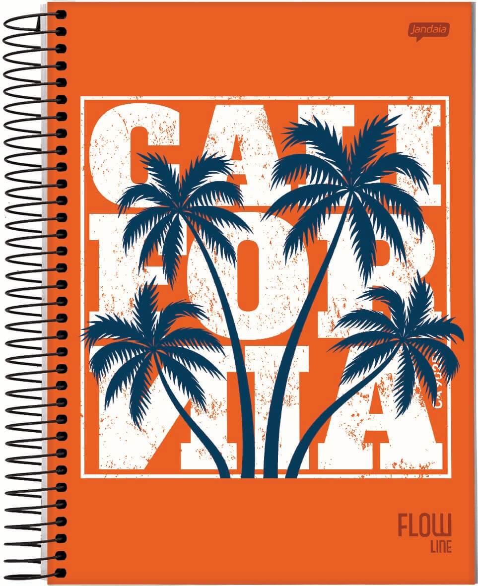 Caderno C/D 12 Materias Flow Jandaia