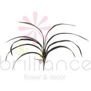 Folhas Finas Artificiais de Orquídea com 60Cm - Brilliance