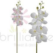 Haste Artificial de Orquídea Phalan Com 7 Flores Branca - Brilliance